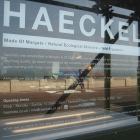 06.17, Haeckels, Margat...