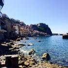 Scilla...Mix aus Capri ...