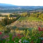 Landgut bei Rignano sul...