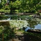 Japanischer Garten in W...
