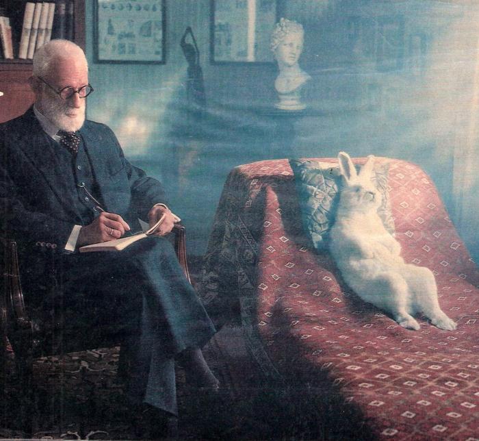 """Hase: """"Was haben Sie für ein Problem?""""..... Psychater: """"Ich bin der Ghostwriter eines Hasen!"""""""