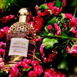 Aqua Allegoria Granada Salvia - Guerlain