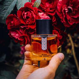 Rose de Jamal by Les Indémodables