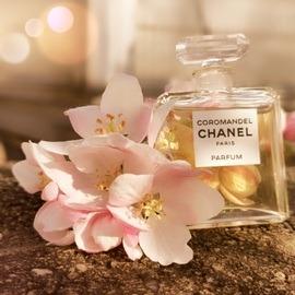 Coromandel (Parfum) - Chanel