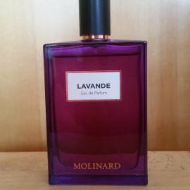 Lavande (Eau de Parfum) by Molinard