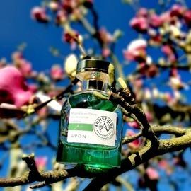 Artistique - Magnolia en Fleurs by Avon