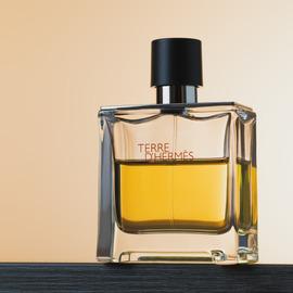 Terre d'Hermès (Parfum) by Hermès