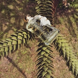 Meliora von Parfums de Marly