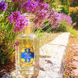 Iris des Champs (Eau de Parfum) - Houbigant