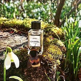 Jersey (Eau de Parfum) von Chanel