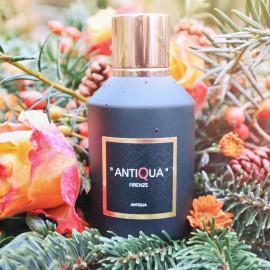 Antiqua by Antiqua Firenze