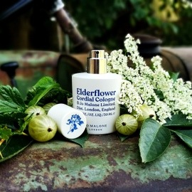 Elderflower Cordial / Elderflower & Gooseberry von Jo Malone