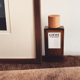 Loewe pour Homme (Eau de Toilette) - Loewe