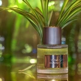 Beau de Jour (Eau de Parfum) - Tom Ford