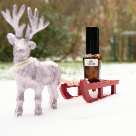 Oh what fun it is to ride in a one deer open sleigh