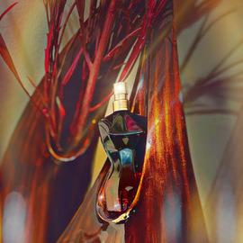 La Belle Le Parfum by Jean Paul Gaultier