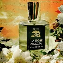 Tea Rose Mimosa von Teone Reinthal Natural Perfume