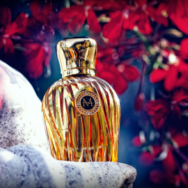 Gold Collection - Fiamma by Moresque
