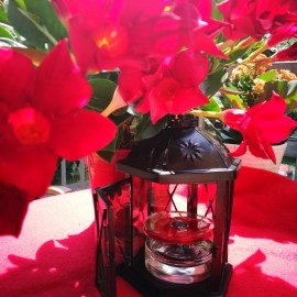 Flower in the Air (Eau de Parfum) - Kenzo