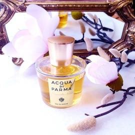 Magnolia Nobile (Eau de Parfum) von Acqua di Parma