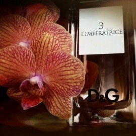 L'Impératrice - Dolce & Gabbana