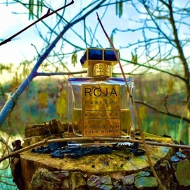 Risqué pour Homme / Creation-R pour Homme (Parfum) - Roja Parfums