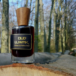 Oud Luwak (Extrait de Parfum) - Areej Le Doré