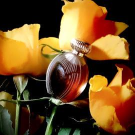 Duftende Rosen für alle lieben Mamas. Und Parfumos:).