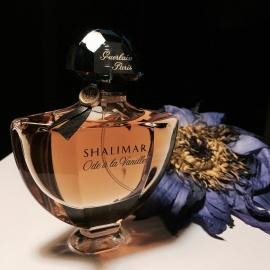 Shalimar Ode à la Vanille - Sur la route du Mexique - Guerlain