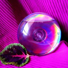 Ultraviolet von Paco Rabanne