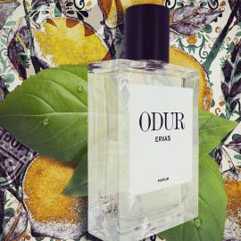 Ervas von Odur