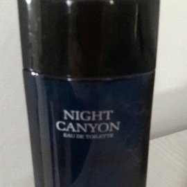 Night Canyon von Real Time