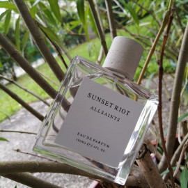 Sunset Riot by AllSaints