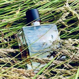 Terre d'Hermès (Parfum) - Hermès