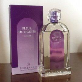 Les Fleurs de Provence - Fleur de Figuier by Molinard