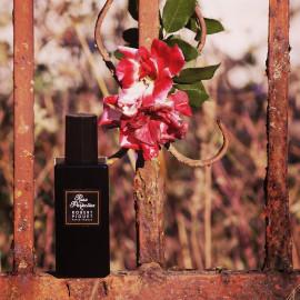 Romanik - Rose - Rost. Perfektion im Herbst.