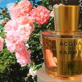 Rosa Nobile (Eau de Parfum) von Acqua di Parma