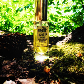 Wald (Eau de Parfum) by Euphorium Brooklyn