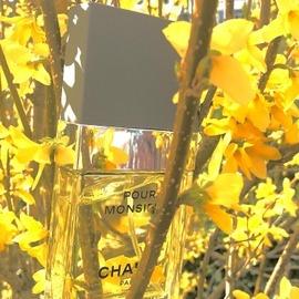 Pour Monsieur (Eau de Parfum) by Chanel