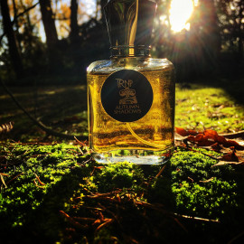 Autumn Shadows by Teone Reinthal Natural Perfume