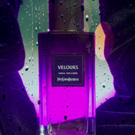 Le Vestiaire - Velours von Yves Saint Laurent
