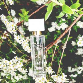 White Tea Wild Rose von Elizabeth Arden