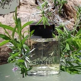 Platinum Égoïste (Eau de Toilette) von Chanel