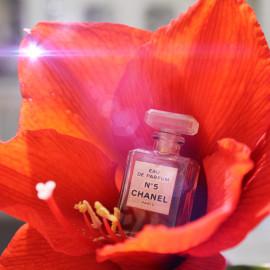 N°5 (Eau de Parfum) by Chanel