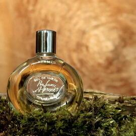 Parfum d'Hermès (Eau de Toilette) by Hermès