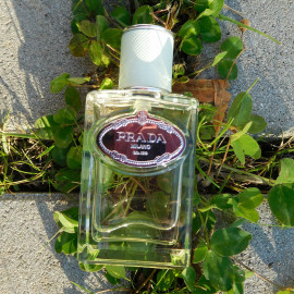 Infusion d'Iris (Eau de Parfum) (2015) von Prada