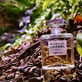 Bois des Îles (Parfum) von Chanel