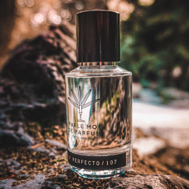 Woody Perfecto/107 - Parle Moi de Parfum