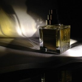 Collection Excessive - Oud Shamash by The Different Company