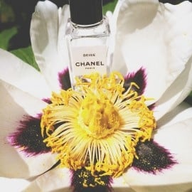Beige (Eau de Toilette) von Chanel